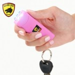 Smallest Stun Gun in the world