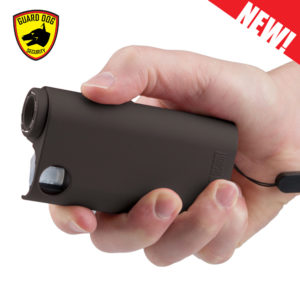stun gun, pepper spray, flashlight