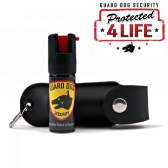 pepper spray and case